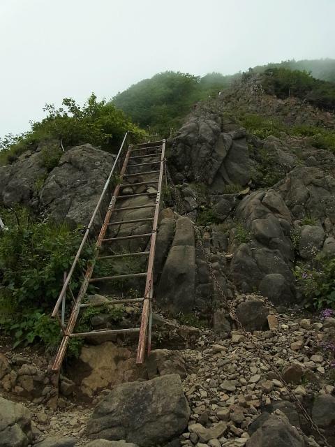 八ヶ岳・阿弥陀岳(南沢~中岳のコル) 登山口コースガイド ハシゴ【登山口ナビ】