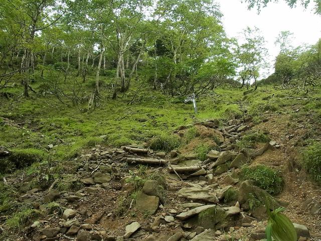 八ヶ岳・横岳(桜平~硫黄岳~奥ノ院) 登山口コースガイド【登山口ナビ】