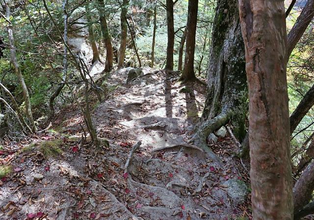 日向山(矢立石~錦滝周回)登山口コースガイド 急坂【登山口ナビ】
