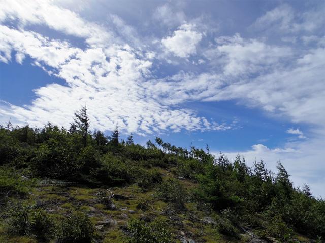 辻山(甘利山~千頭星山)登山口コースガイド 辻山展望地【登山口ナビ】
