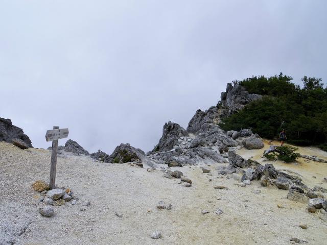 鳳凰三山(夜叉神峠~砂払岳)登山口コースガイド 鳳凰小屋分岐【登山口ナビ】