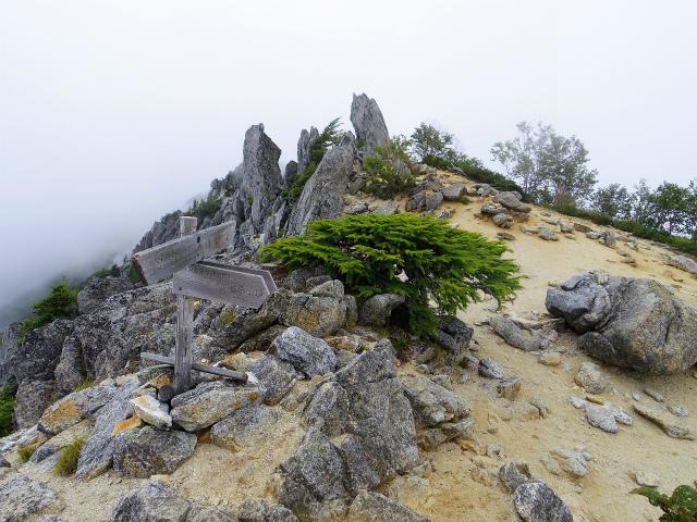 鳳凰三山(夜叉神峠~砂払岳)登山口コースガイド 赤抜沢ノ頭分岐【登山口ナビ】