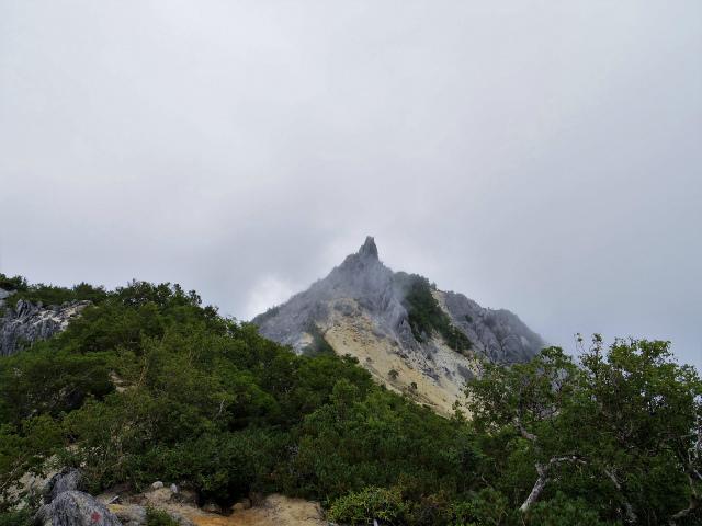 鳳凰三山(広河原~白鳳峠・高嶺)登山口コースガイド 赤抜沢ノ頭からの地蔵岳オベリスク【登山口ナビ】