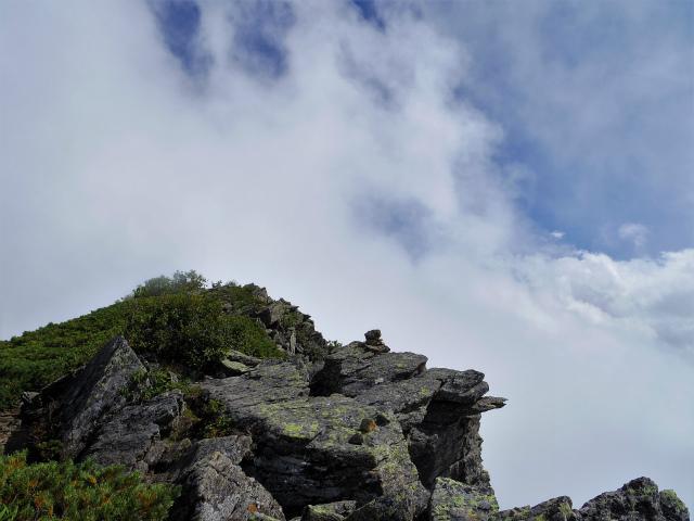 鳳凰三山(広河原~白鳳峠・高嶺)登山口コースガイド 高嶺展望【登山口ナビ】