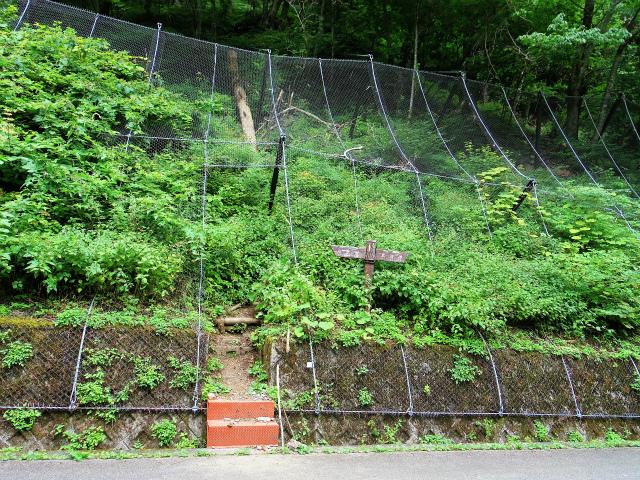鳳凰三山(広河原~白鳳峠・高嶺)登山口コースガイド 白鳳峠登山口【登山口ナビ】