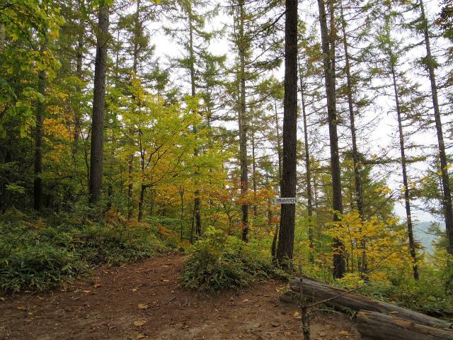 日向山(矢立石~錦滝周回)登山口コースガイド ハイキングコース【登山口ナビ】