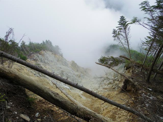辻山(甘利山~千頭星山)登山口コースガイド 大崩壊地上部【登山口ナビ】