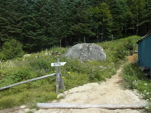 鳳凰三山(夜叉神峠~砂払岳)登山口コースガイド 南御室小屋花畑【登山口ナビ】