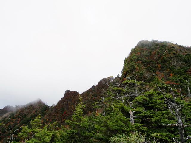 皇海山・鋸山(不動沢コース)登山口コースガイド 岩稜【登山口ナビ】