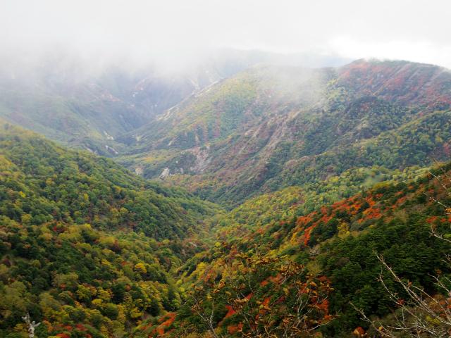 皇海山・鋸山(不動沢コース)登山口コースガイド 松木沢本谷渓谷【登山口ナビ】