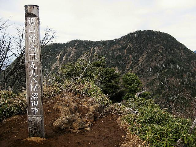 皇海山・鋸山(不動沢コース)登山口コースガイド 鋸山山頂【登山口ナビ】