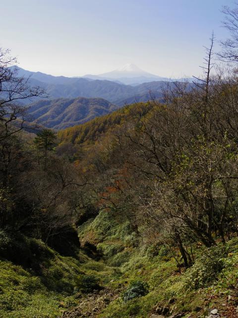 笠取山~唐松尾山~御殿岩 登山口コースガイド 多摩川の源頭と富士山【登山口ナビ】
