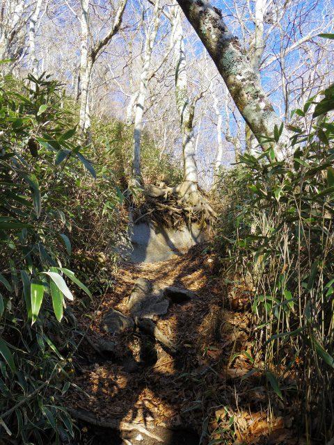 石割山(石割神社) 登山口コースガイド ロープの急登【登山口ナビ】