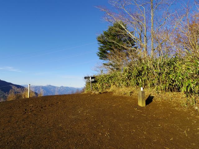 石割山(石割神社) 登山口コースガイド 石割山山頂【登山口ナビ】