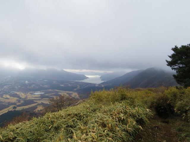 金時山(長尾峠~丸岳~乙女峠)登山口コースガイド 丸岳山頂付近からの芦ノ湖の展望【登山口コースガイド】