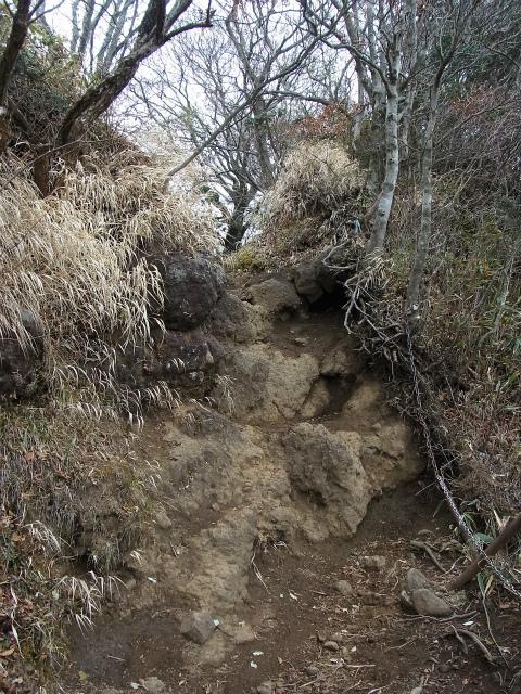金時山(長尾峠~丸岳~乙女峠)登山口コースガイド 鞍部の鎖場【登山口ナビ】