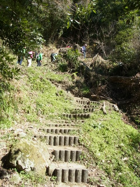 伊予ヶ岳(平群天神社コース) 登山口コースガイド 階段の急登【登山口ナビ】