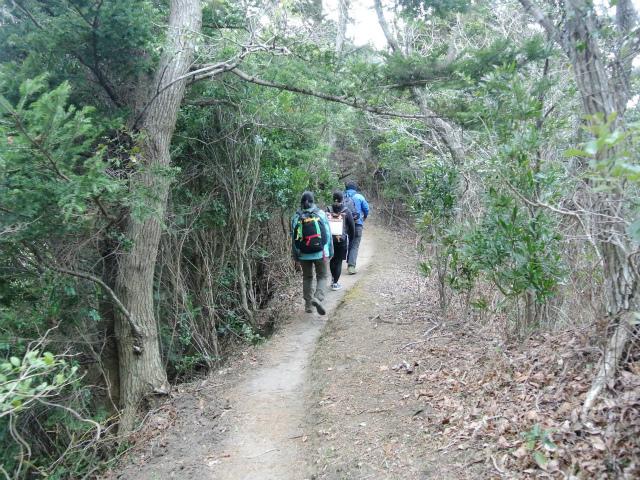 高宕山(石射太郎コース)登山口コースガイド 平坦な稜線【登山口ナビ】