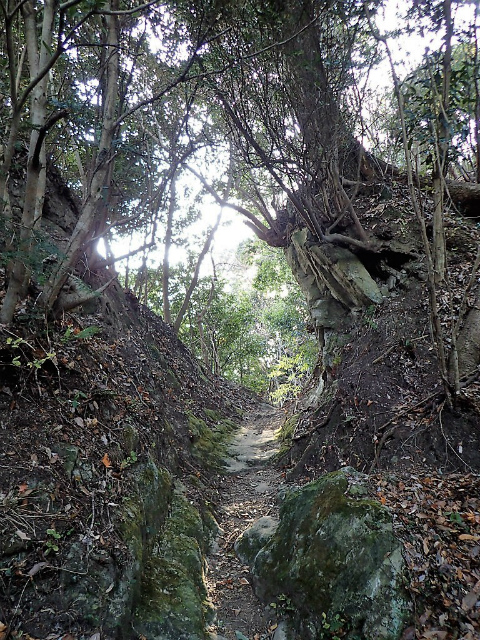 高宕山(石射太郎コース)登山口コースガイド 切通し【登山口ナビ】