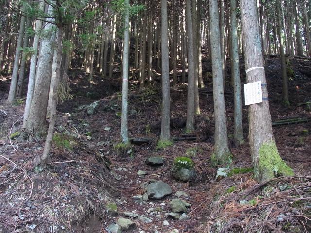 塔ノ岳(二俣~大倉尾根コース) 登山口コースガイド 遭難注意【登山口ナビ】