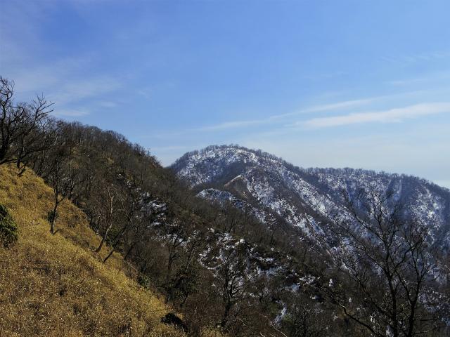檜洞丸(日陰沢~犬越路コース) 登山口コースガイド 大笄の稜線からの檜洞丸【登山口ナビ】