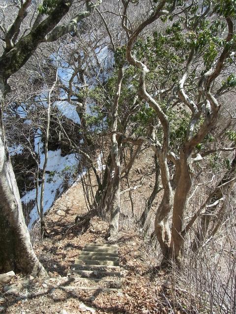 檜洞丸(日陰沢~犬越路コース) 登山口コースガイド 小笄鞍部 【登山口ナビ】