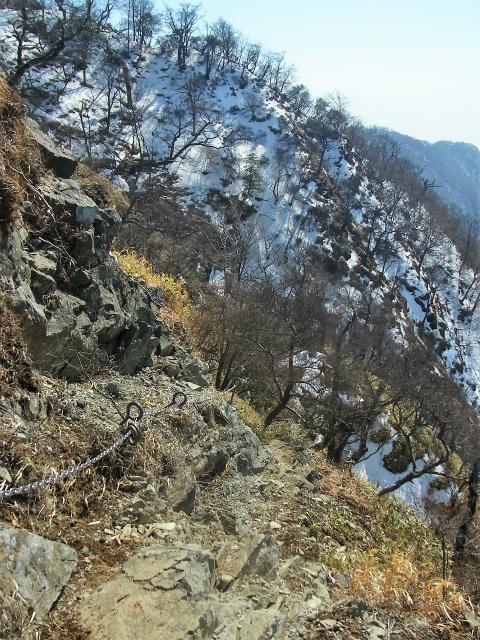 檜洞丸(日陰沢~ヤタ尾根コース) 登山口コースガイド【登山口ナビ】