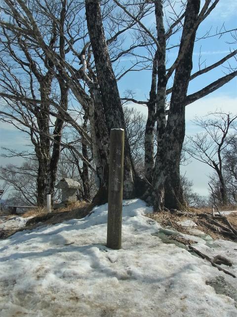 檜洞丸(日陰沢~犬越路コース) 登山口コースガイド 山頂【登山口ナビ】