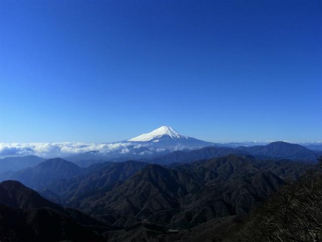 檜洞丸(日陰沢~ヤタ尾根コース) 登山口コースガイド 山頂西側から富士山の眺望【登山口ナビ】