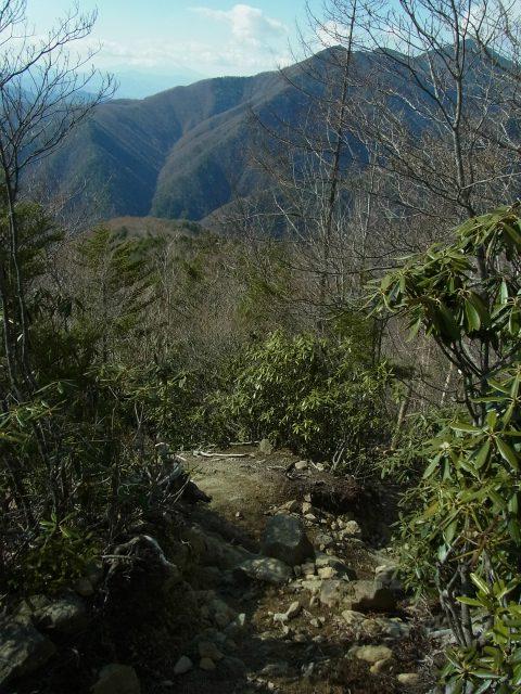 甲武信ヶ岳(徳ちゃん新道コース)登山口コースガイド 展望地【登山口ナビ】