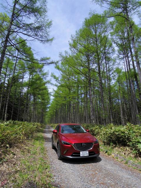 【登山の車選び】マツダ・CX-3 XDプロアクティブ 鳥居峠林道【登山口ナビ】
