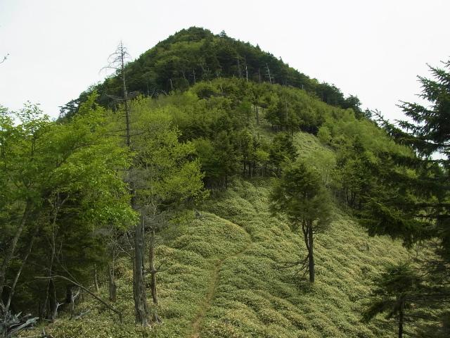 和名倉山(三ノ瀬~東仙波)登山口コースガイド リンノ峰【登山口ナビ】