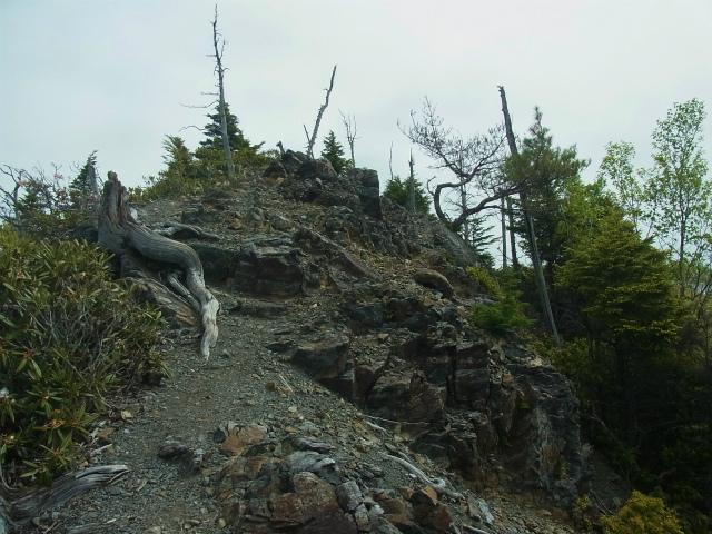和名倉山(三ノ瀬~東仙波)登山口コースガイド 西仙波と東仙波の中間ピーク岩稜【登山口ナビ】