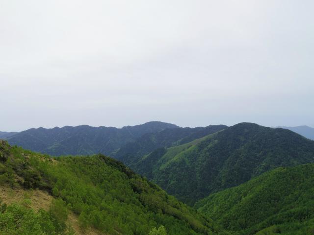 和名倉山(三ノ瀬~東仙波)登山口コースガイド 西仙波と東仙波の中間ピークから雲取山の展望【登山口ナビ】
