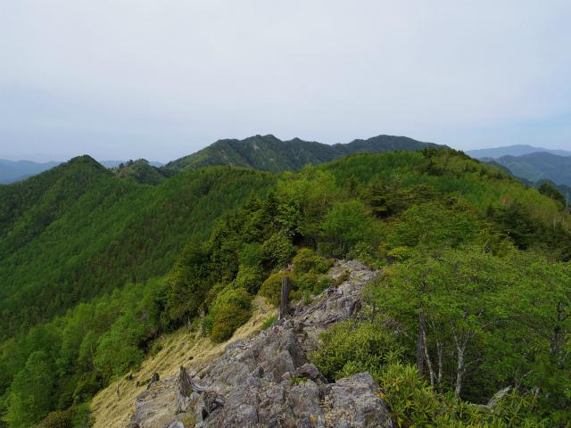 和名倉山(三ノ瀬~東仙波)登山口コースガイド 西仙波と東仙波の中間ピークから笠取山の展望【登山口ナビ】