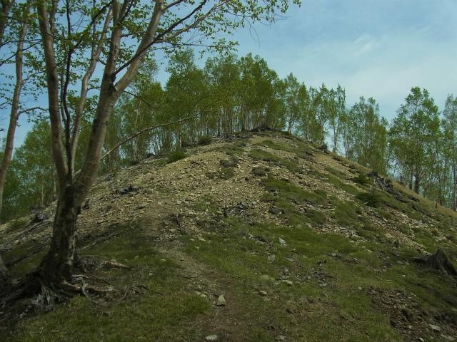 和名倉山(三ノ瀬~東仙波)登山口コースガイド 東仙波の北の小ピーク【登山口ナビ】