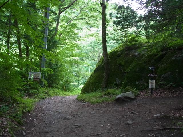 日向山(尾白川渓谷~矢立石)登山口コースガイド 甲斐駒ヶ岳コース分岐【登山口ナビ】
