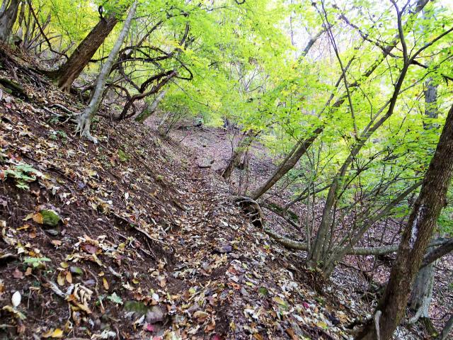 両神山(日向大谷・七滝沢ルート)登山口コースガイド 急登【登山口ナビ】