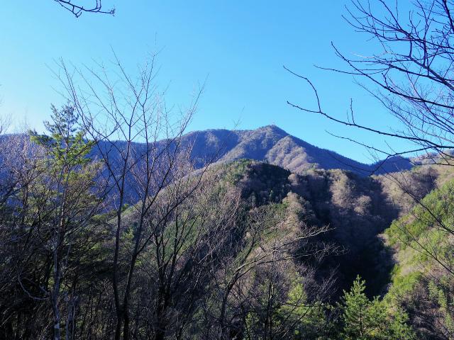 三ツ峠山(本社ヶ丸~清八山) 鉄塔の稜線からの三ツ峠【登山口コースガイド】