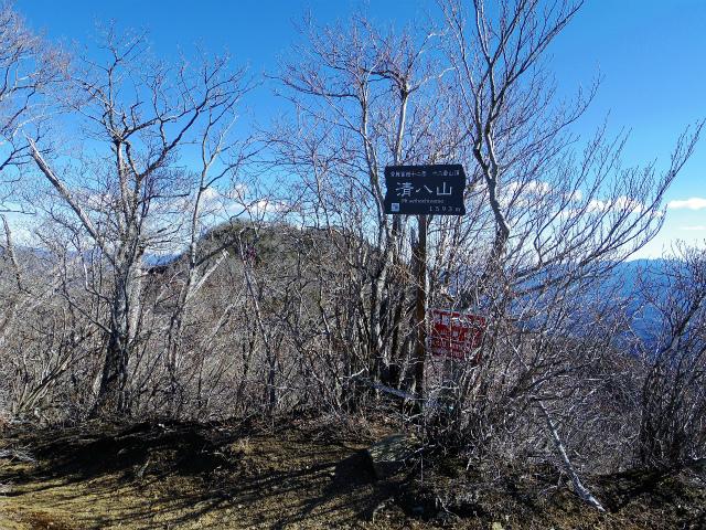 三ツ峠山(本社ヶ丸~清八山) 清八山山頂【登山口コースガイド】