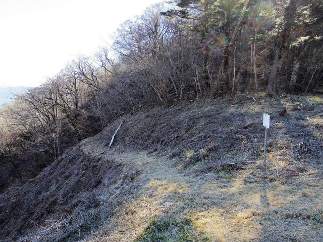 三ツ峠山(本社ヶ丸~清八山) 鉄塔巡視道【登山口コースガイド】