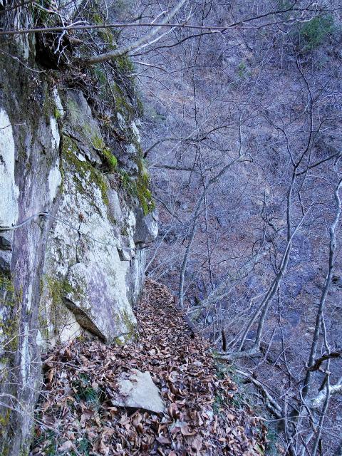 三ツ峠山(北口登山道)登山口コースガイド 横歩き【登山口コースガイド】