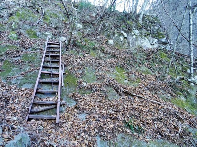 三ツ峠山(北口登山道)登山口コースガイド 階段の岩場【登山口コースガイド】