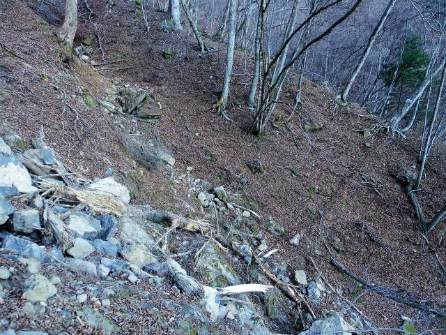 三ツ峠山(北口登山道)登山口コースガイド ガレ場横断【登山口コースガイド】