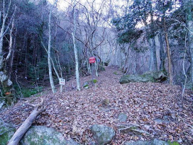 三ツ峠山(北口登山道)登山口コースガイド【登山口コースガイド】