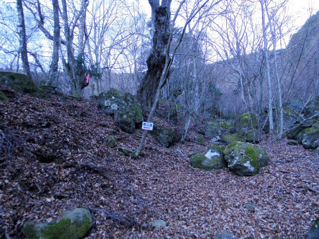 三ツ峠山(北口登山道)登山口コースガイド 指導標【登山口コースガイド】
