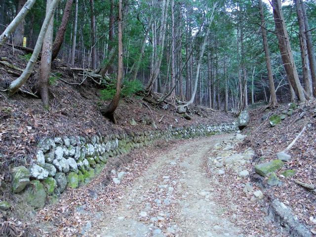 三ツ峠山(北口登山道)登山口コースガイド 恩賜林 林道【登山口コースガイド】