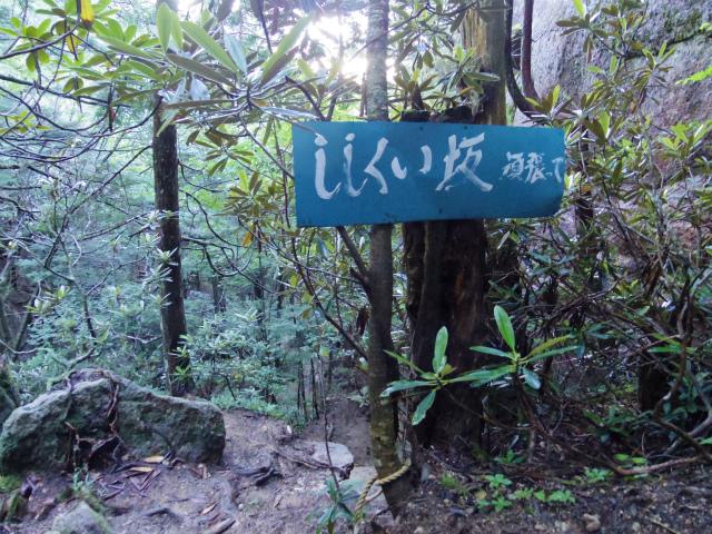 瑞牆山・不動滝口(黒森コース)登山口コースガイド ししくい坂【登山口ナビ】