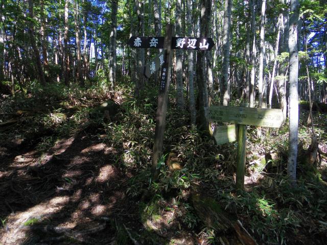赤岳(八ヶ岳)・県界尾根 登山口コースガイド【登山口ナビ】