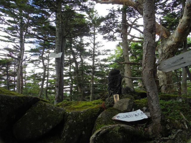 赤岳(八ヶ岳)・県界尾根 登山口コースガイド 大天狗【登山口ナビ】